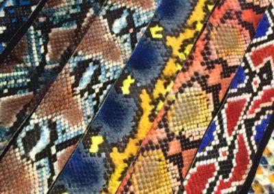 handpainted python