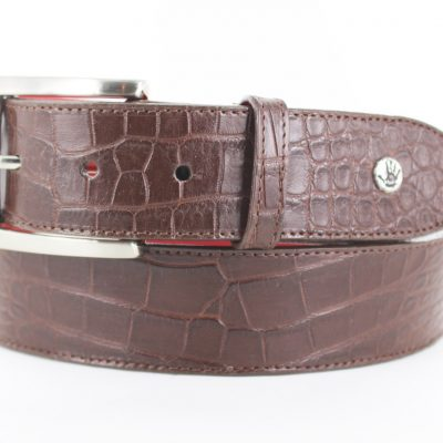 Alligator brown