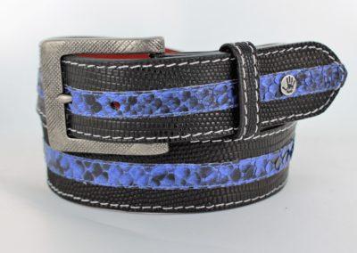black lizard with blue python stripe